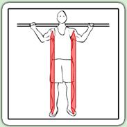 Squat classique jambe ecartee